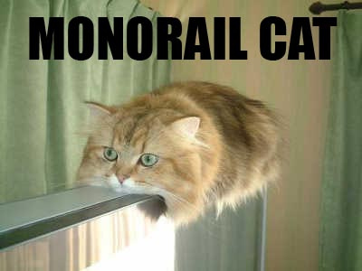 Picture of Monorail Cat